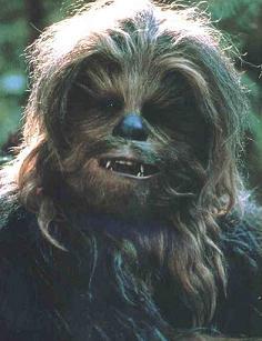 Quiz Chewie